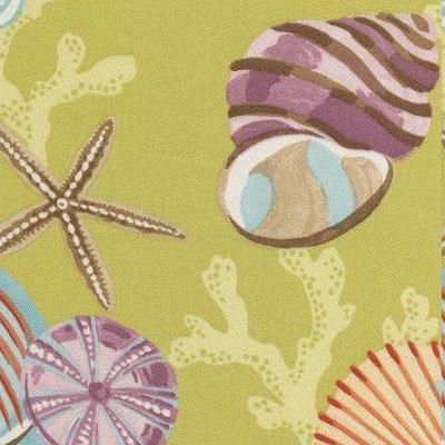 Coral Beach-Algae Image