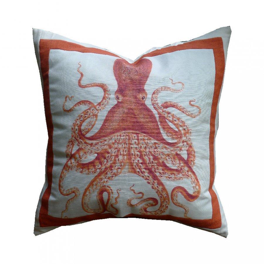 Octopus-2-O Image