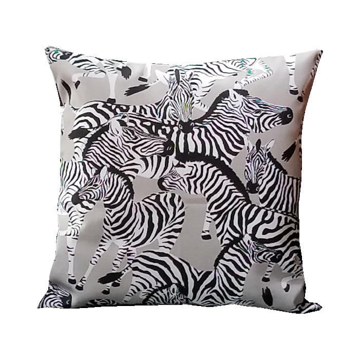 Zebra-2 Image